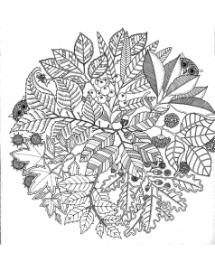 Coloring page adult free to color for kids