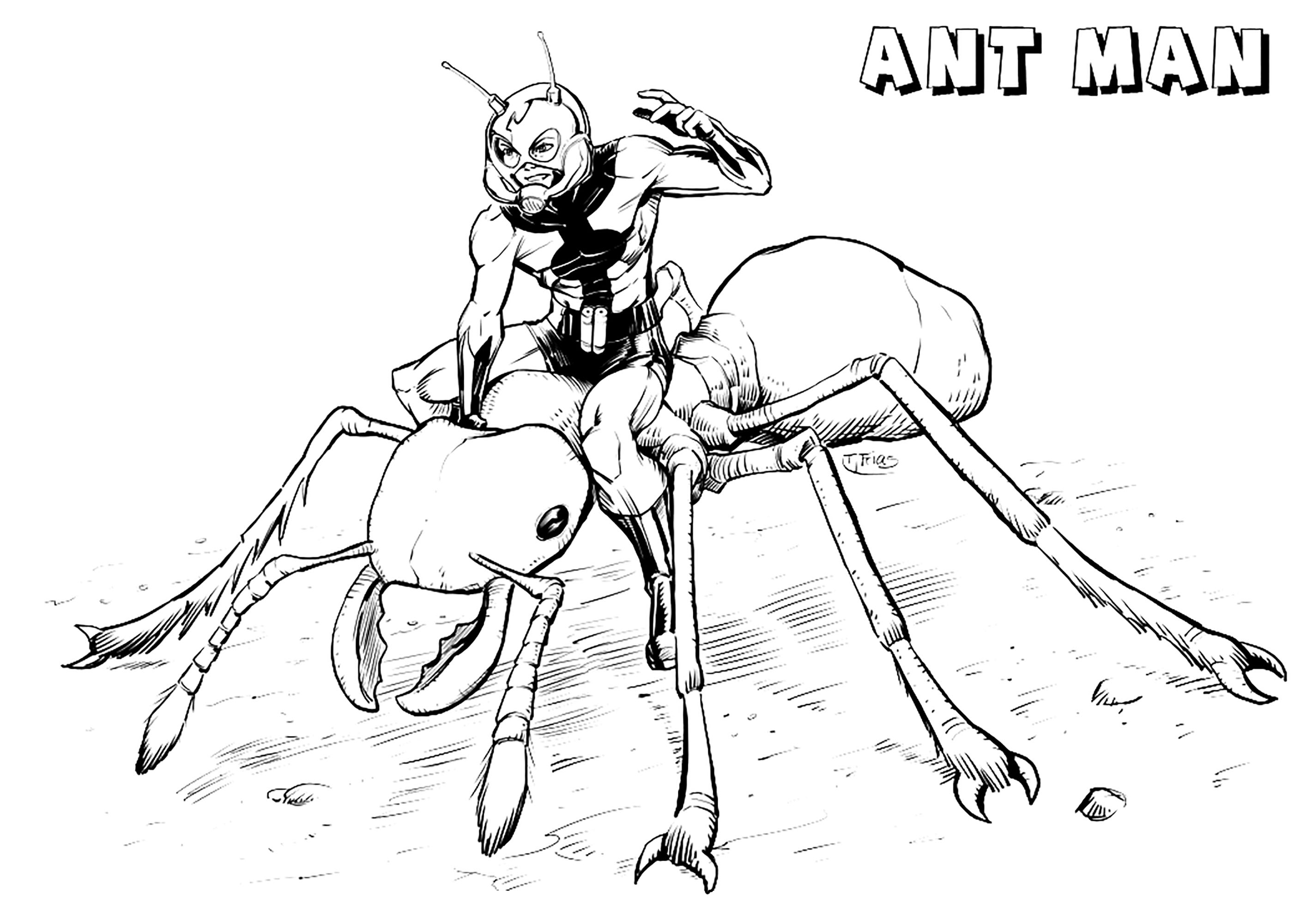 Ant-Man coloring page to download for free
