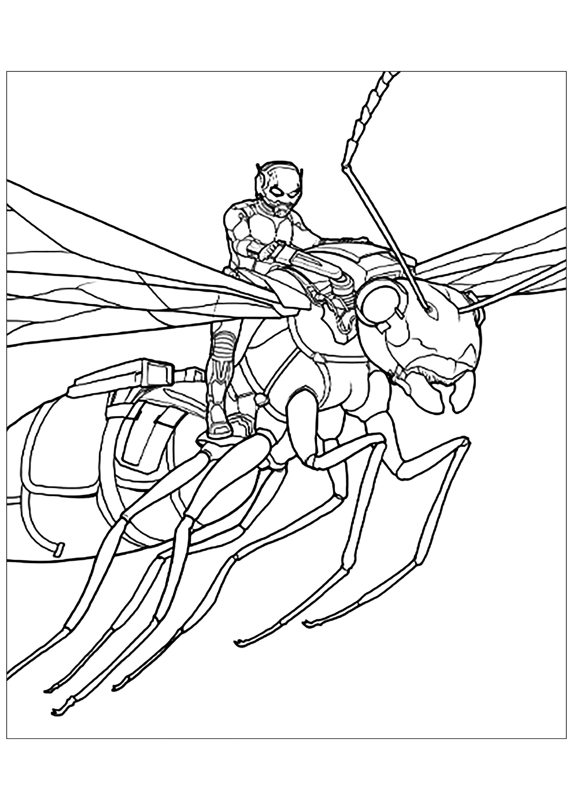 Smiling Ant coloring page | Free Printable Coloring Pages | 2828x2000
