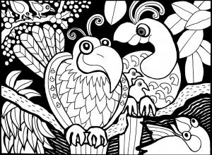 Coloring page birds free to color for children