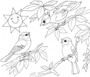 Coloring page birds to color for children