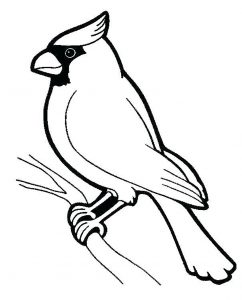 Birds - Free printable Coloring pages for kids