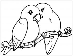Coloring page birds to download