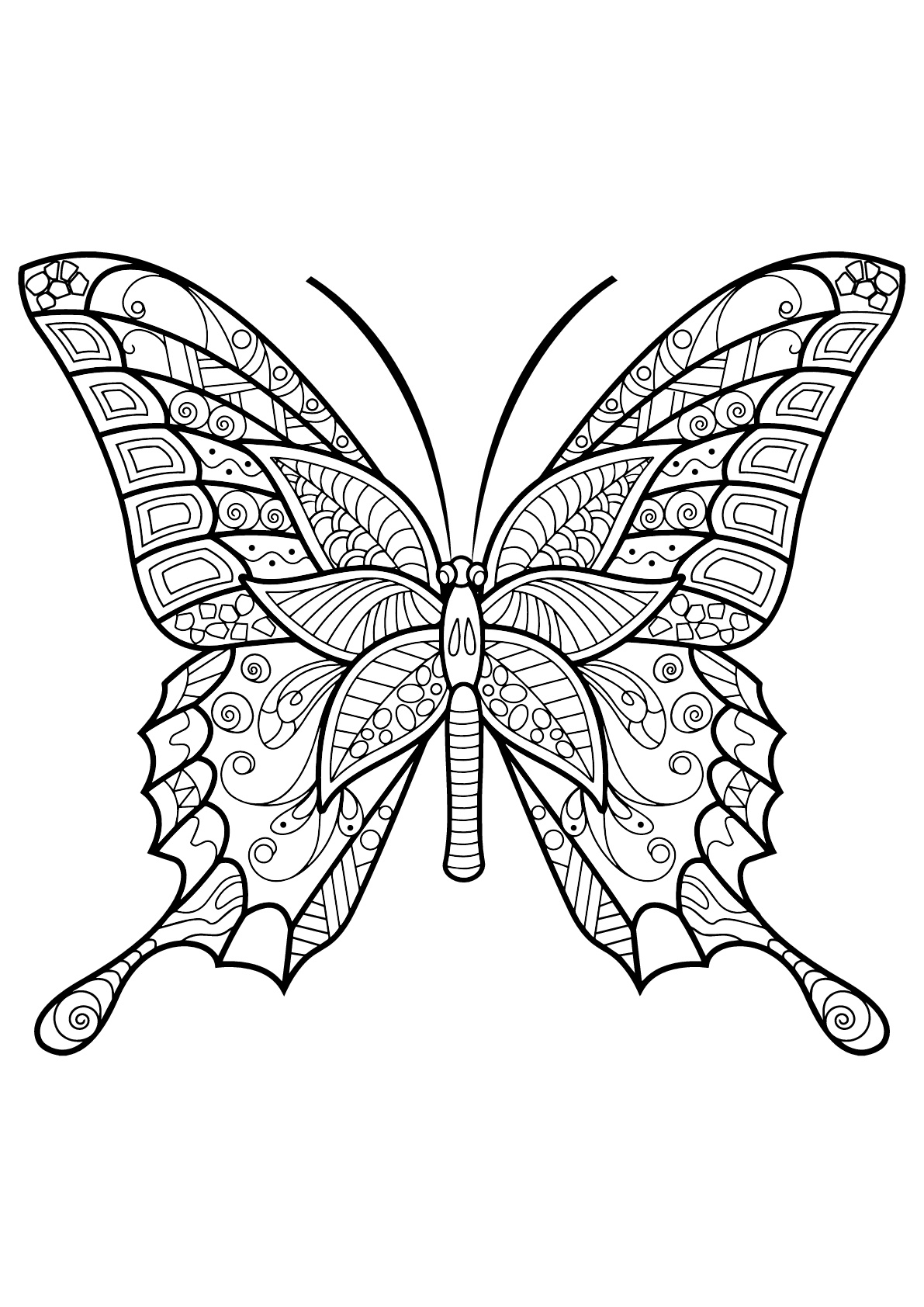Butterflies free to color for children - Butterflies Kids ...