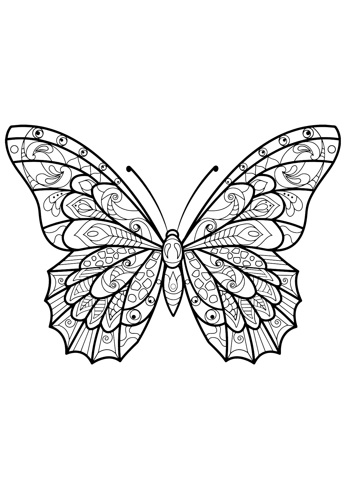 Butterflies free to color for kids - Butterflies Kids ...