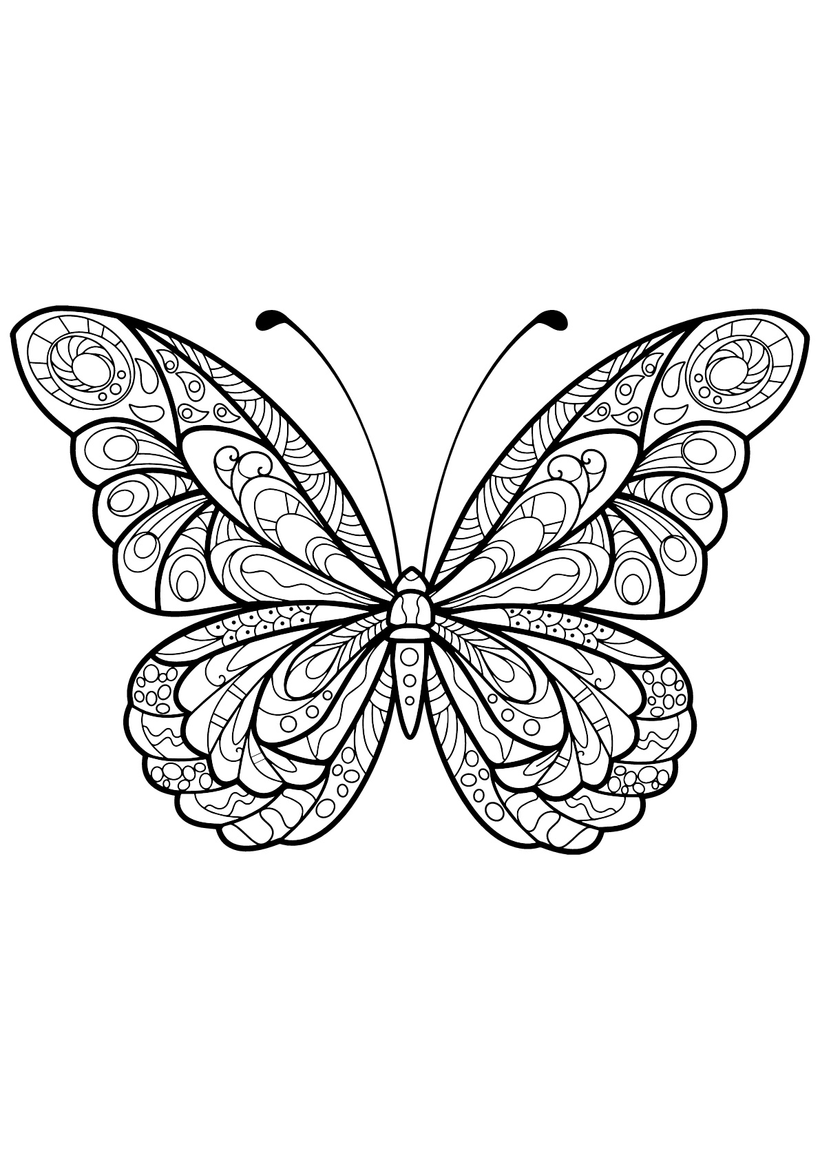 Butterflies for children - Butterflies Kids Coloring Pages