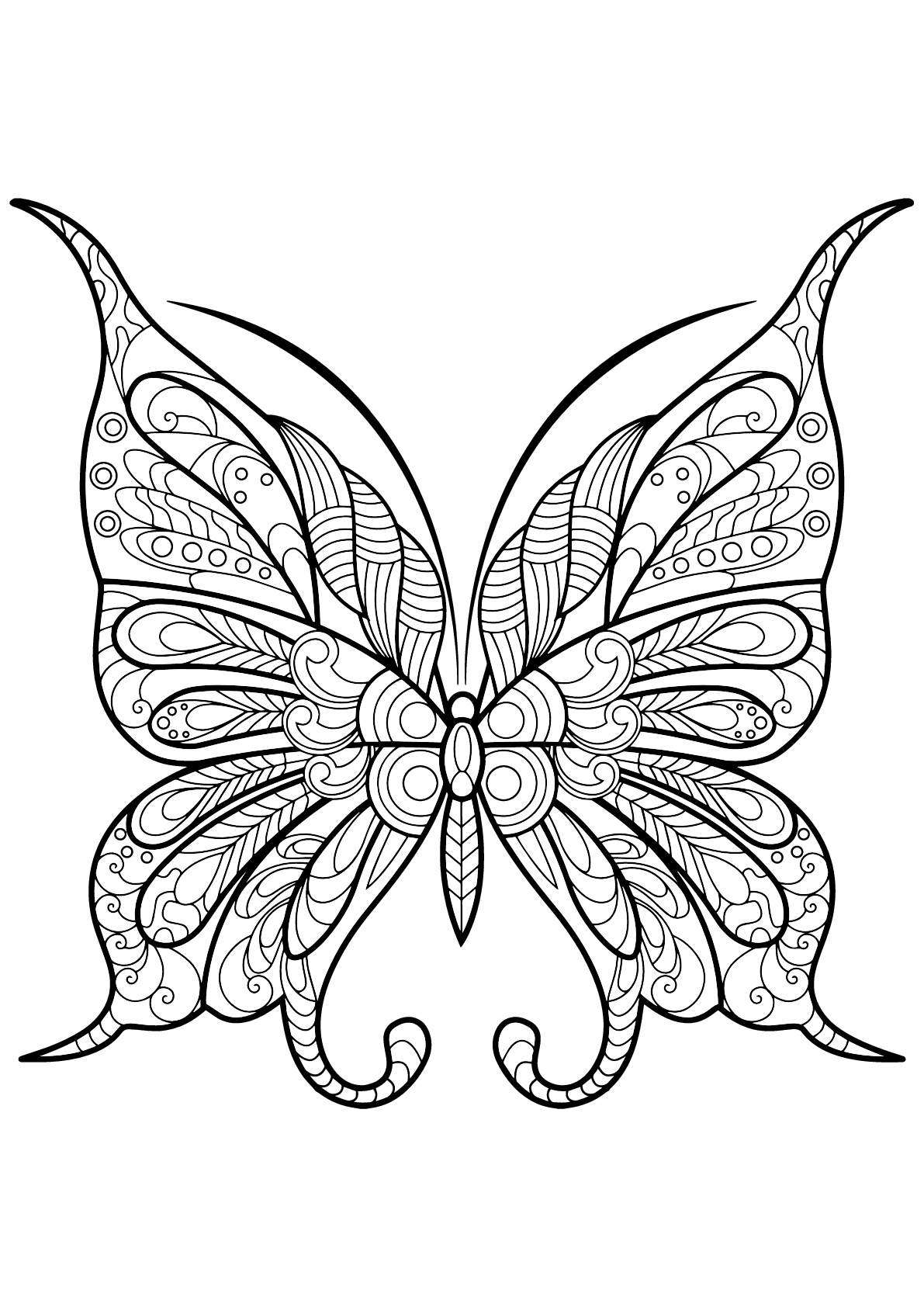 Butterflies to download for free - Butterflies Kids Coloring Pages