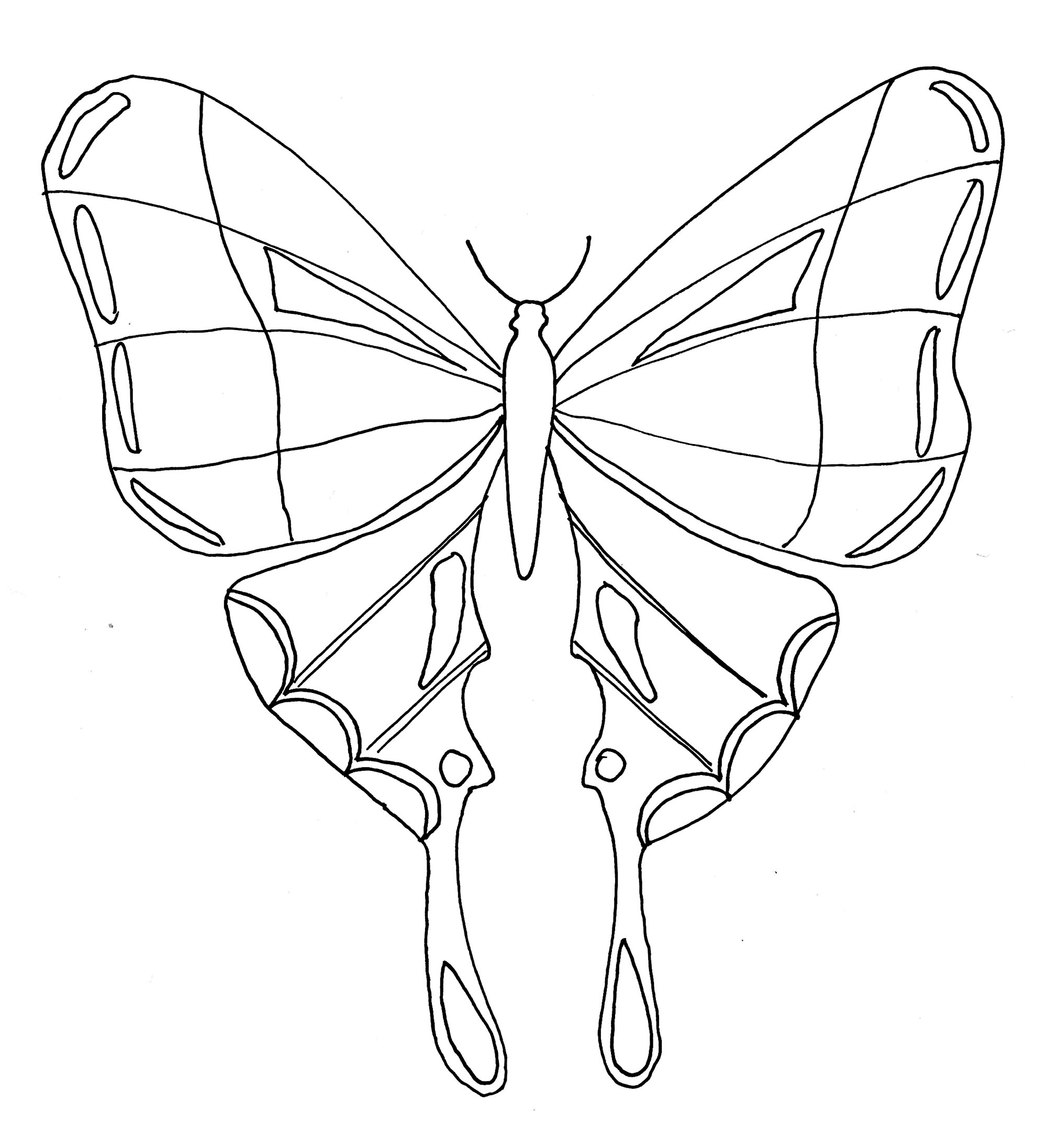 Butterflies to download for free - Butterflies Kids Coloring ...