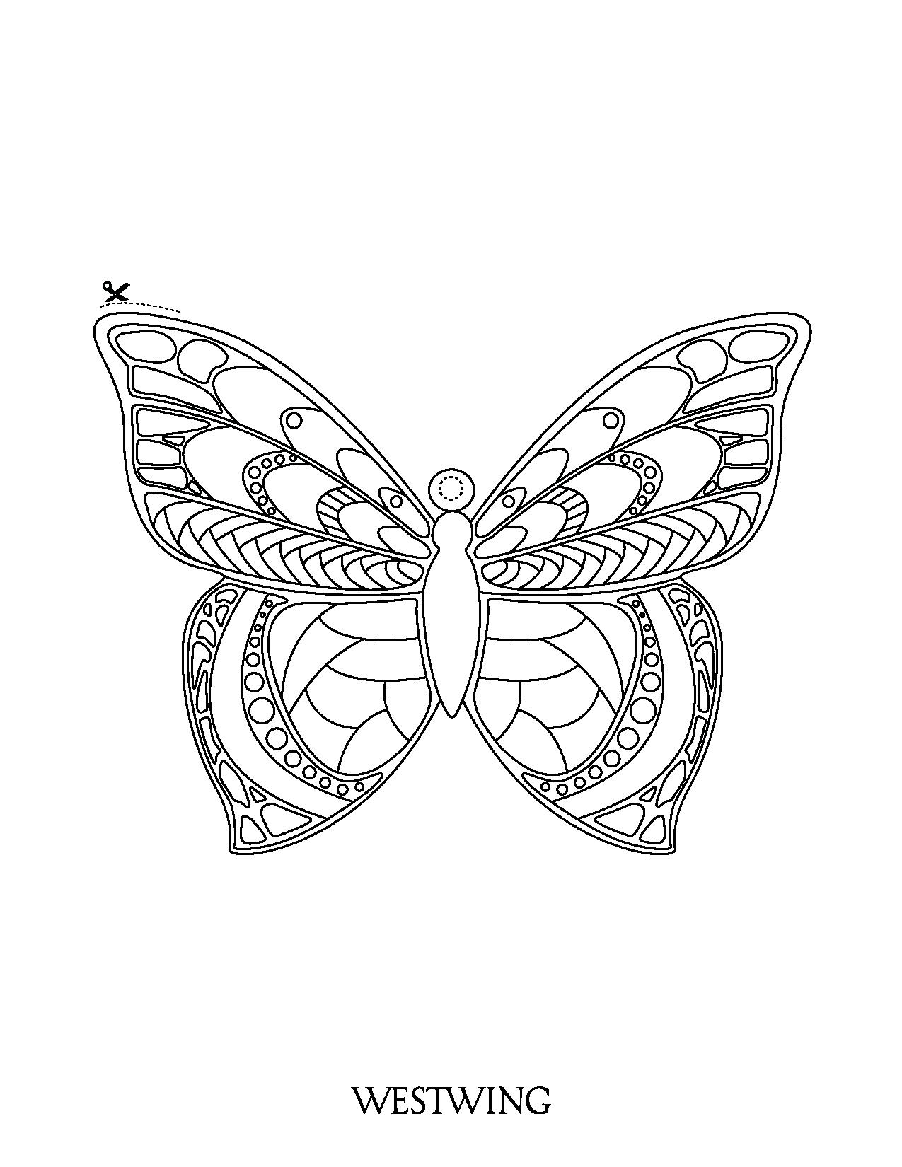Butterflies To Download For Free Butterflies Kids Coloring Pages