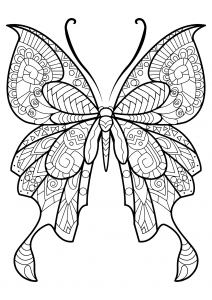 Coloring page butterflies to color for kids