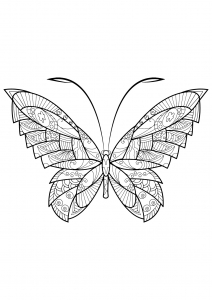 Coloring page butterflies to print for free