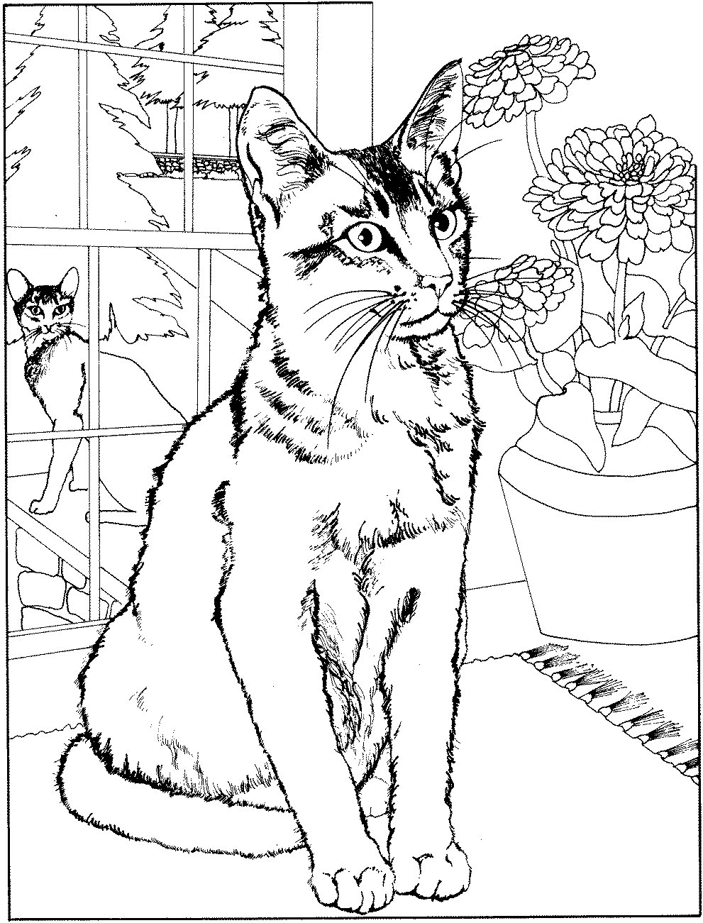 Beautiful Cat coloring page to print and color