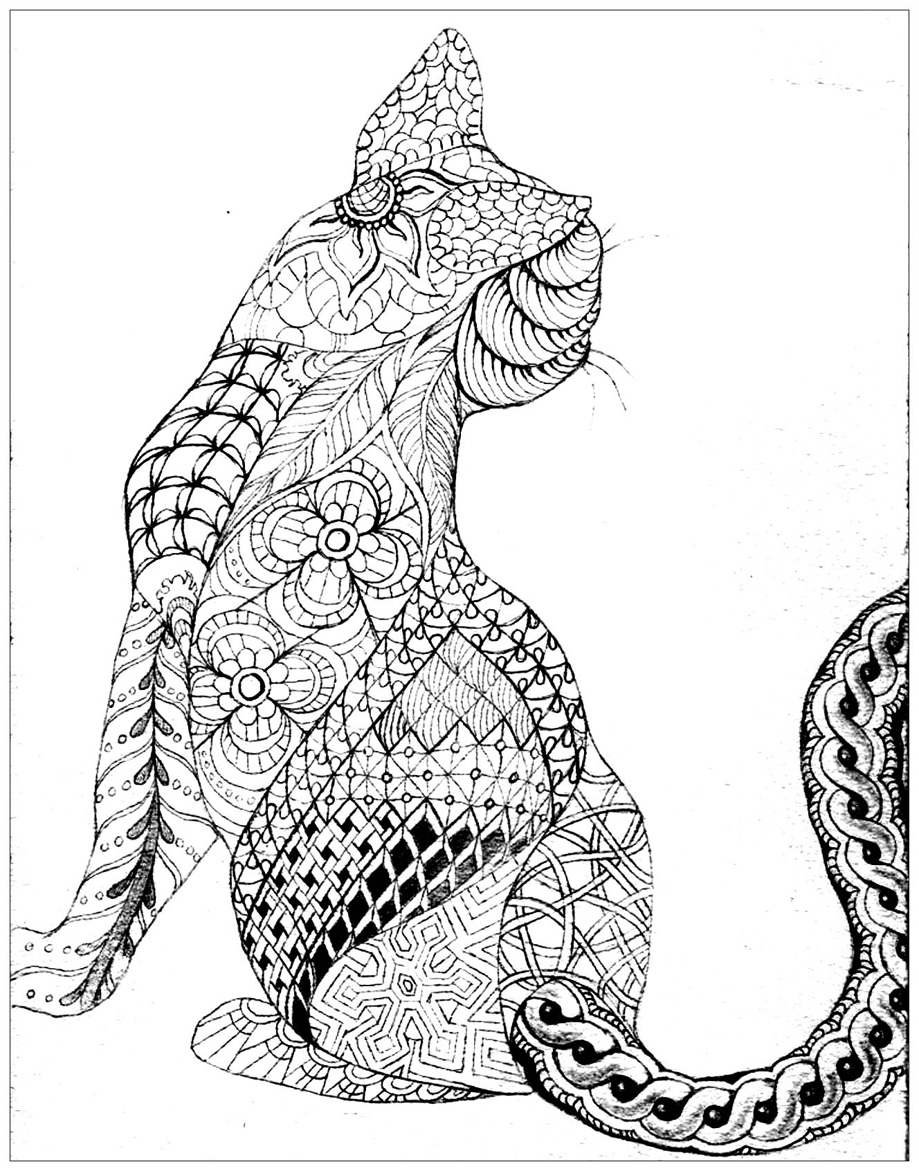 Cats coloring page to print and color for free : Zentangle cat