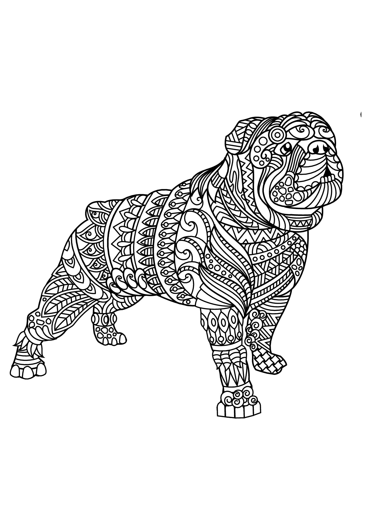 Free Dog coloring page to print and color : bulldog