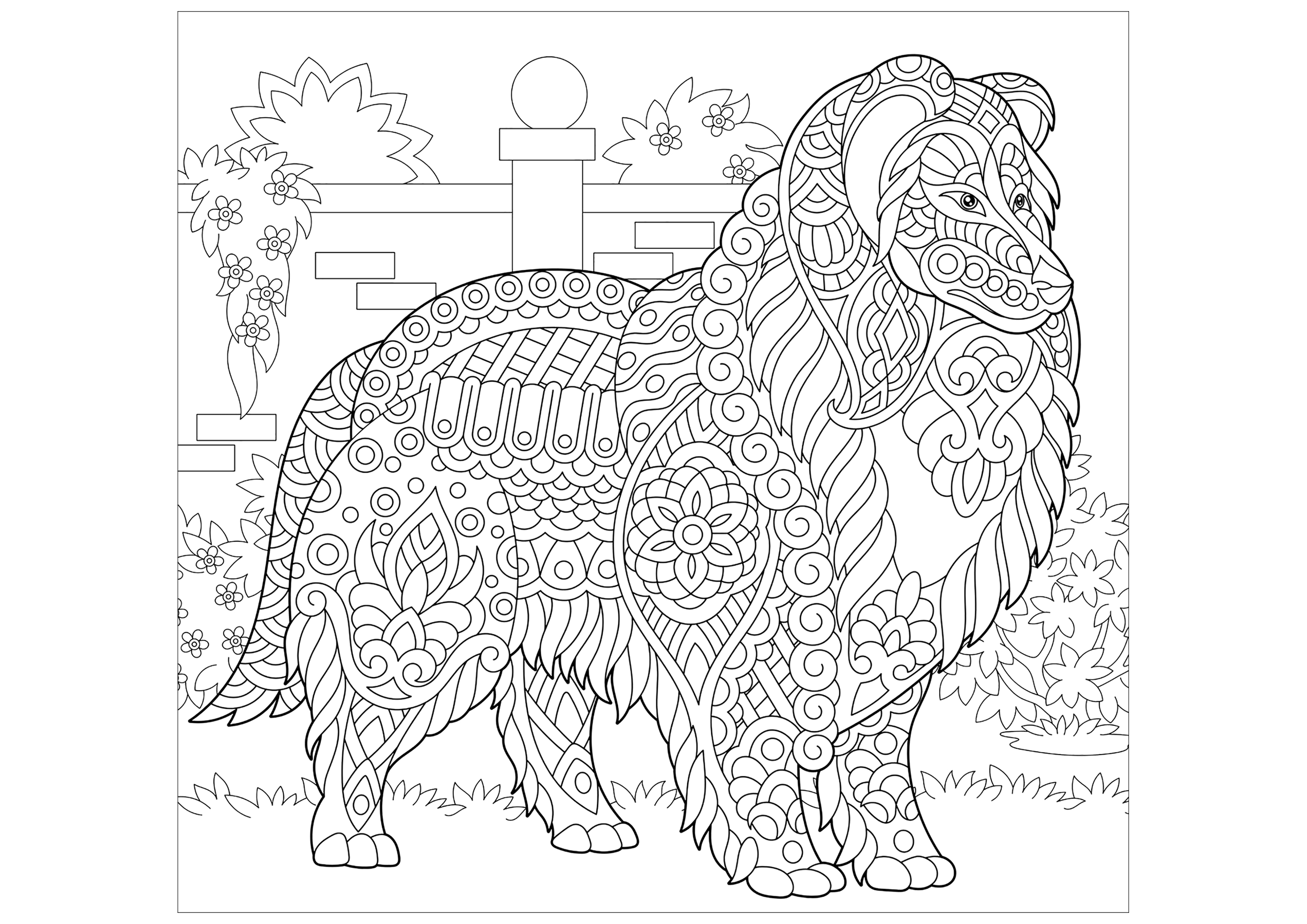 Beautiful Dogs coloring page to print and color