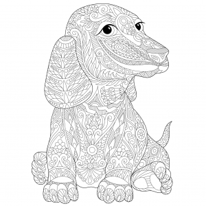 Coloring page dogs to color for kids