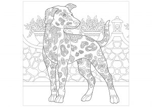 Free Coloring Pages Dog And Kat - Coloring Home | 212x300