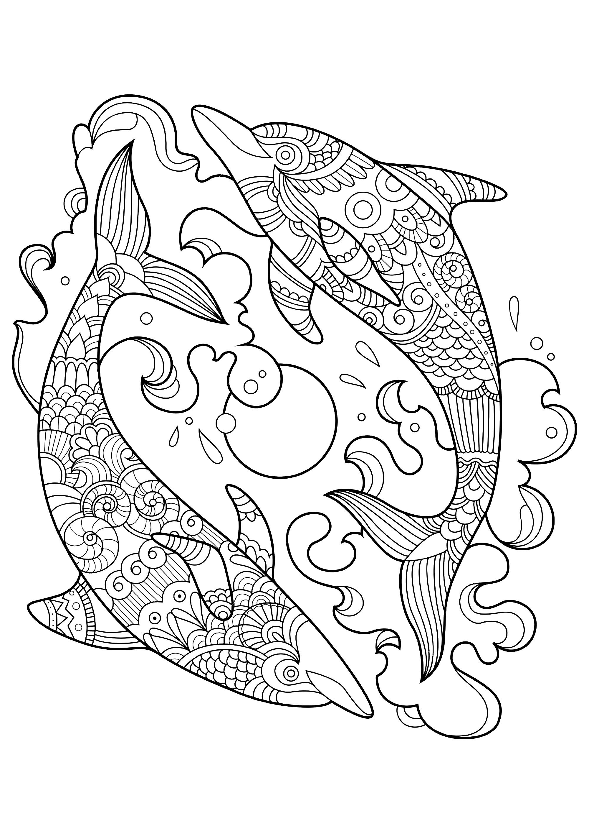 Dolphins to color for children