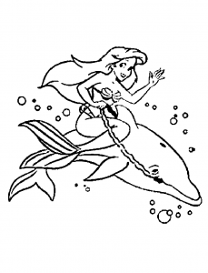 Coloring page dolphins for children