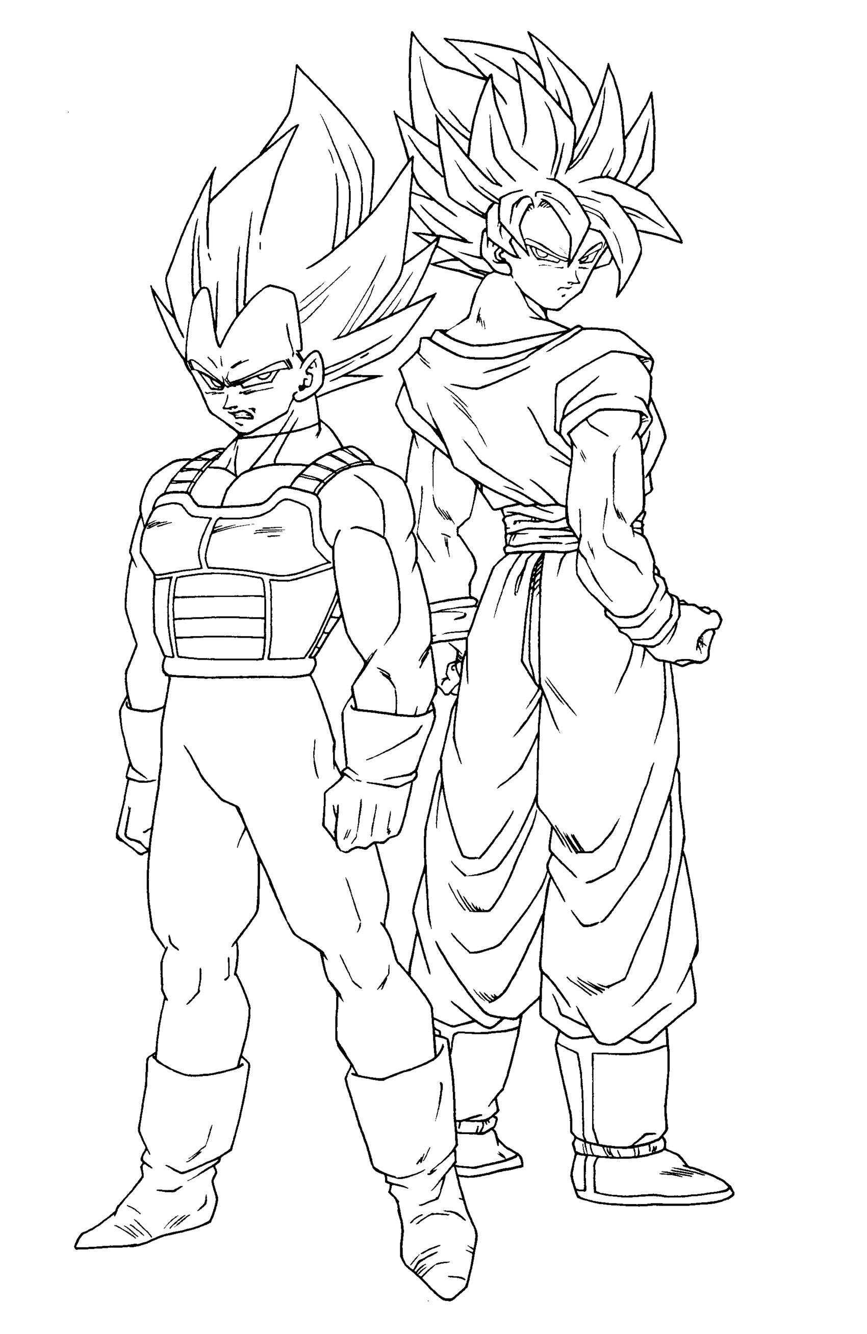 SonGoku and Vegeta Dragon Ball