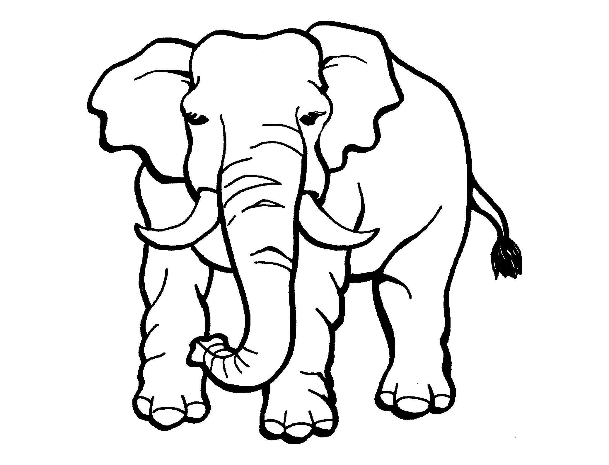 - Elephants To Print For Free - Elephants Kids Coloring Pages