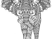 Elephants Coloring Pages for Kids