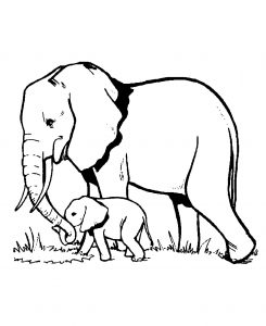 Coloring page elephants free to color for children