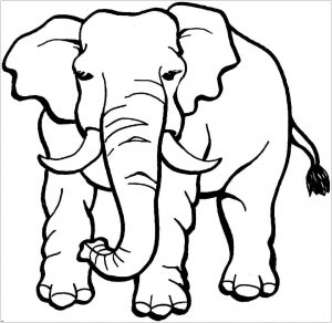Coloring page elephants to print for free