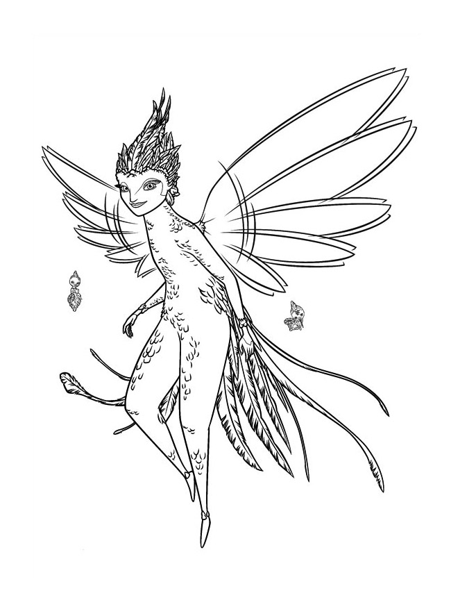 Fairy coloring page with few details for kids