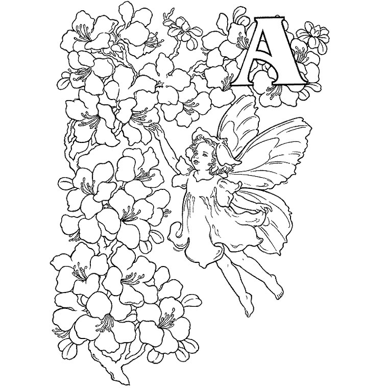 Free Fairy coloring page to print and color