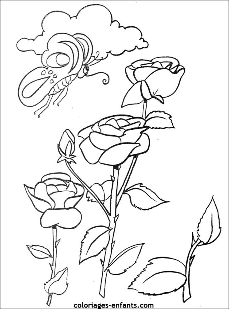 Flowers coloring page with few details for kids
