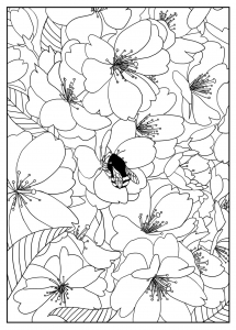 Coloring page flowers to download
