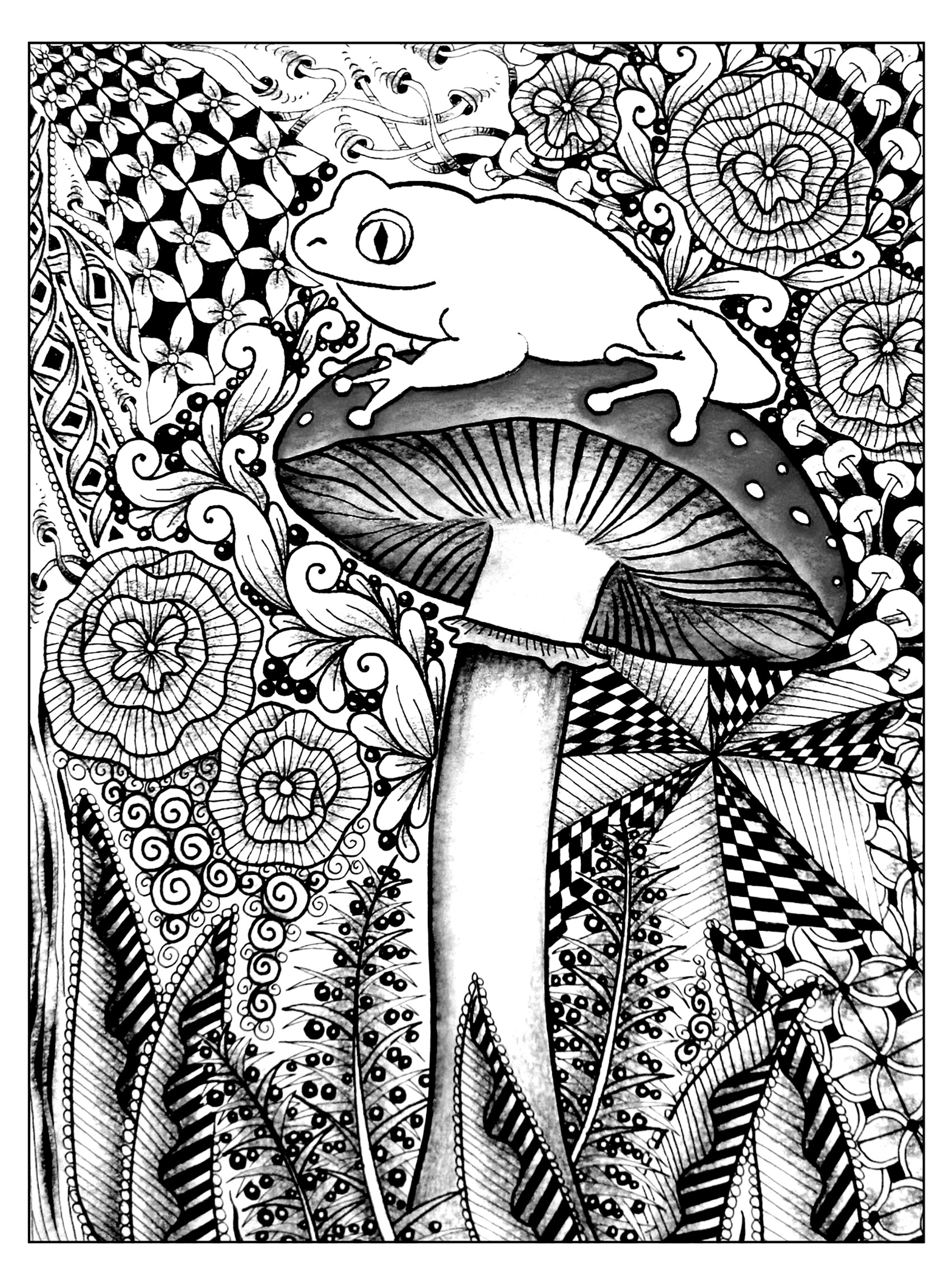 Frogs coloring page to download for free