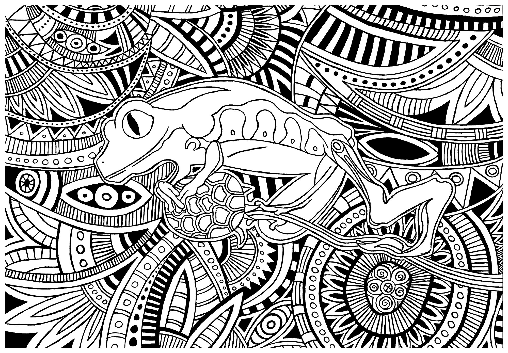 Simple Frogs coloring page to download for free