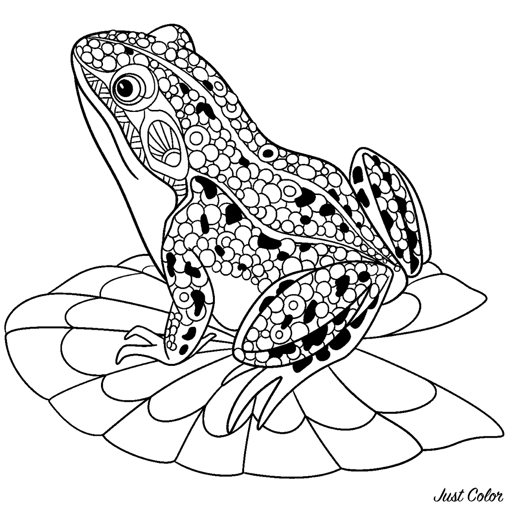 Frogs free to color for children - Frogs Kids Coloring Pages