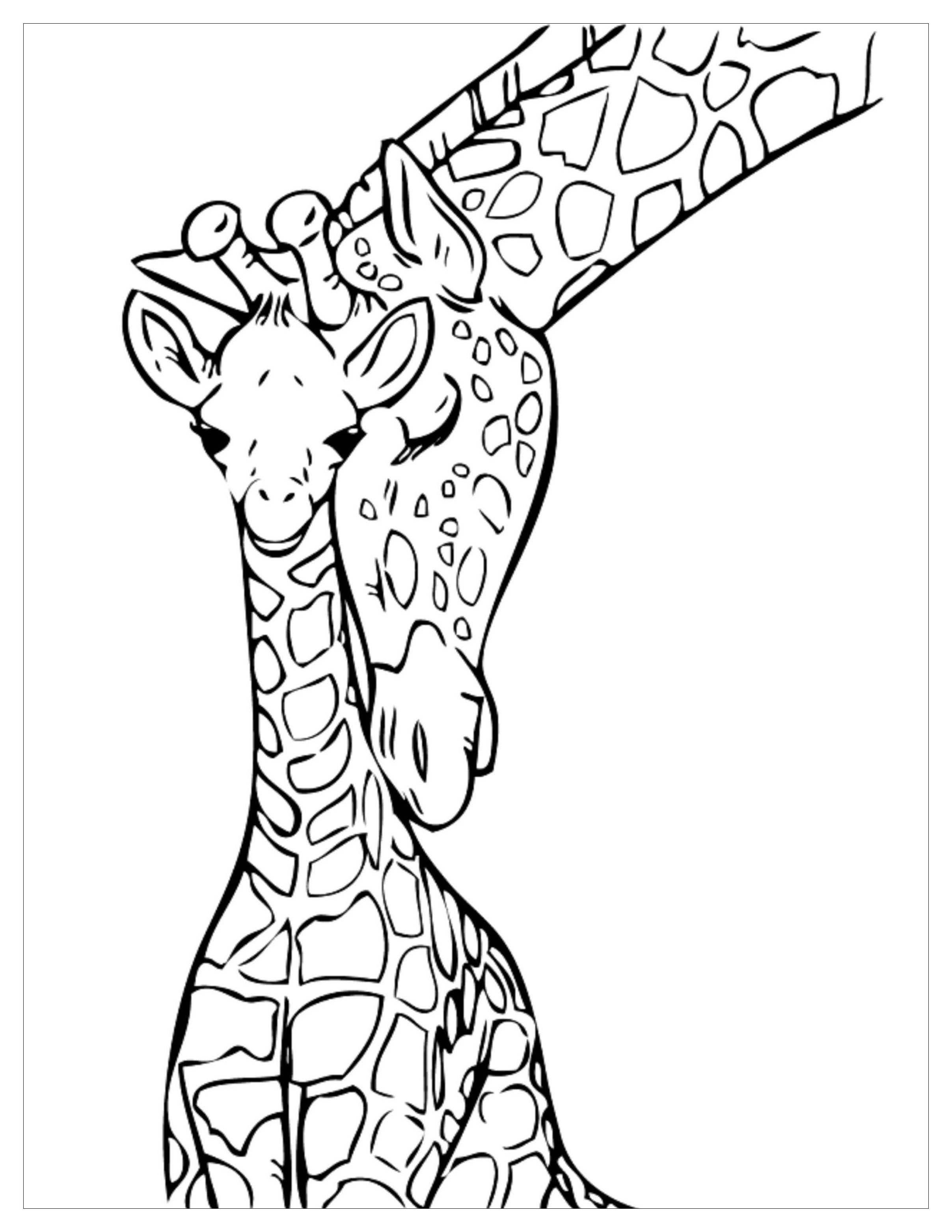 Funny Giraffes coloring page