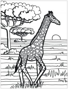Coloring page giraffes to print
