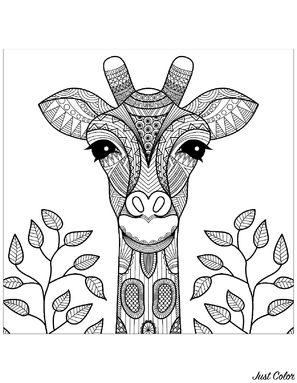 Simple Giraffes coloring page to print and color for free