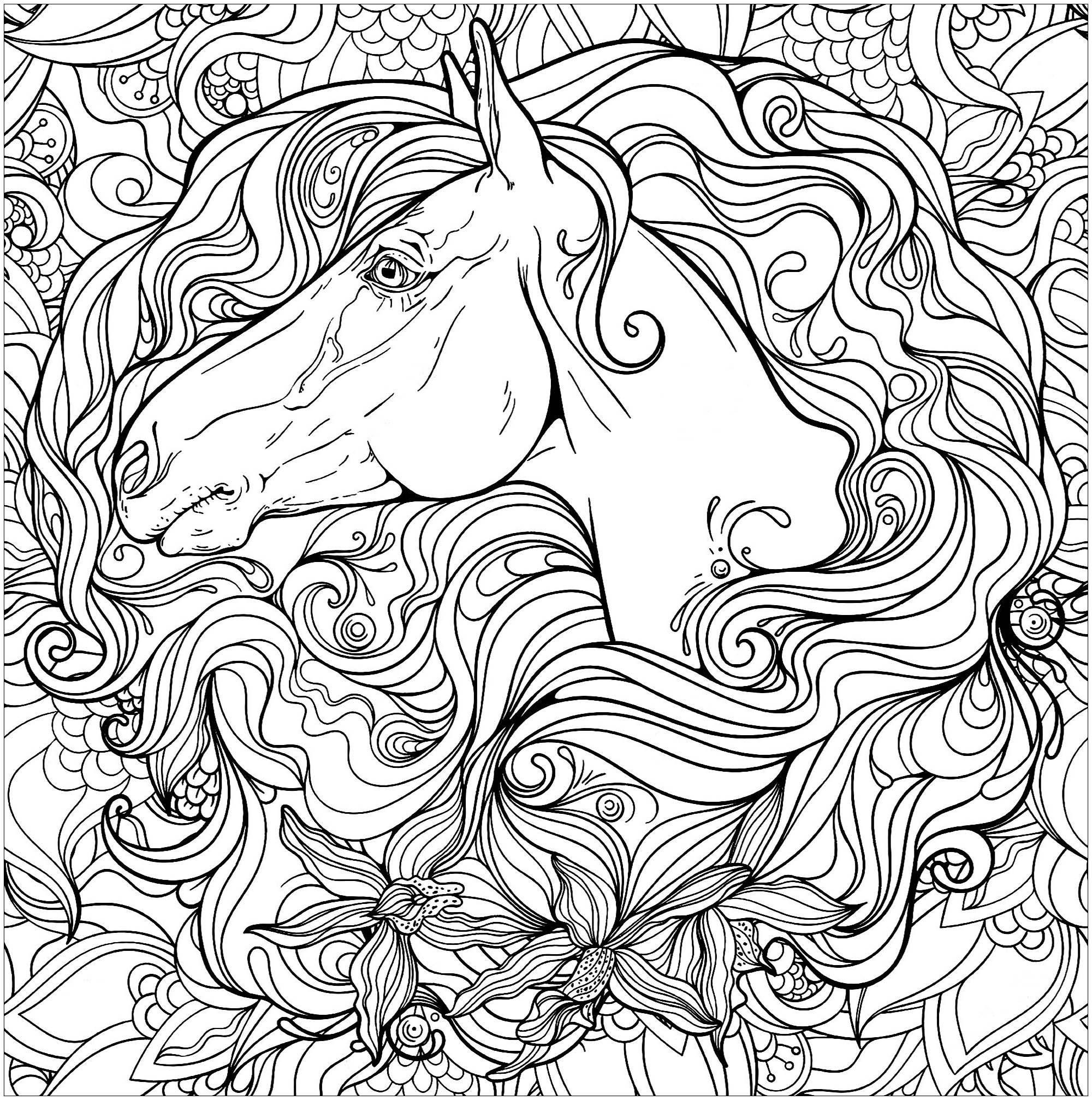 Horse coloring page to print and color : horse head and beautiful mane (2)