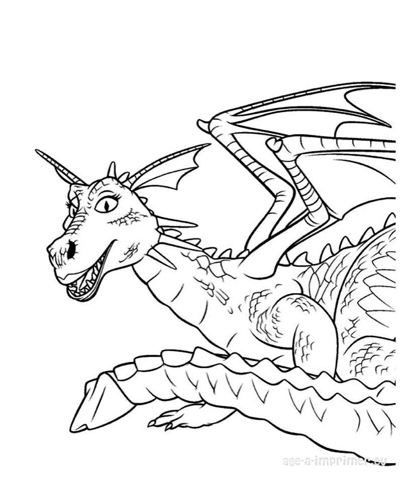 Beautiful How to Train Your Dragon coloring page