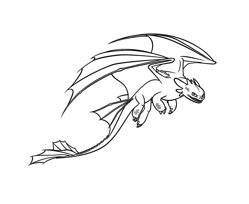 Beautiful How to Train Your Dragon coloring page to print and color