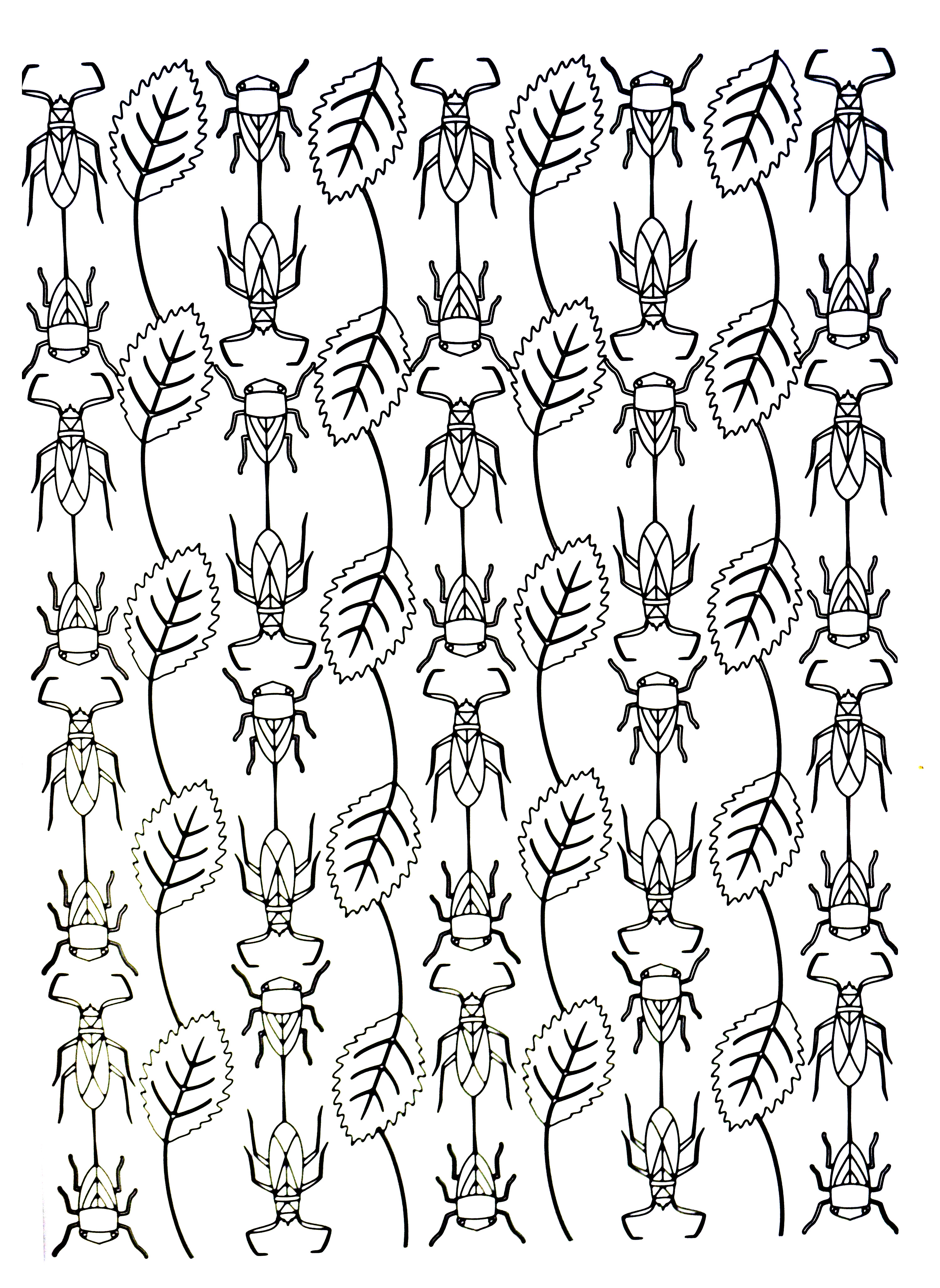 Insects to print for free - Insects Kids Coloring Pages