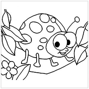 Coloring page insects for kids