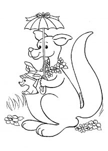 Coloring page kangaroos for kids