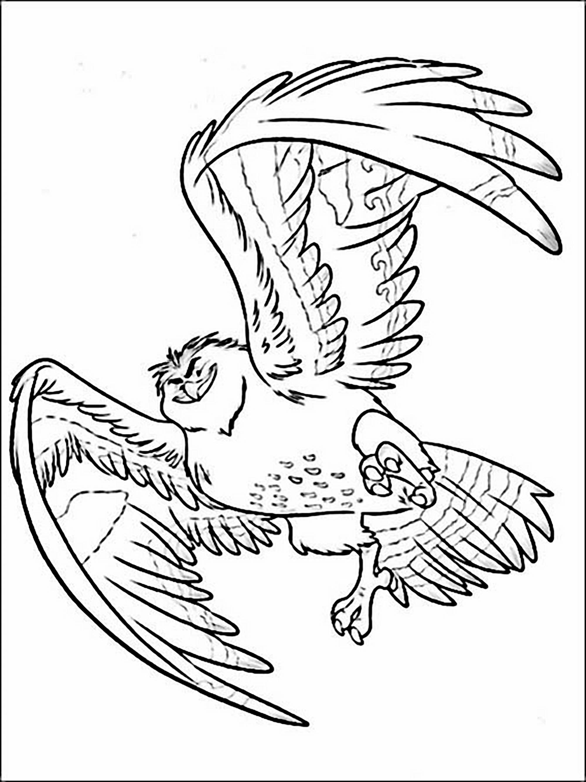 Simple Moana coloring page to download for free : Eagle