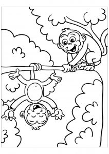 Coloring page monkeys to print for free
