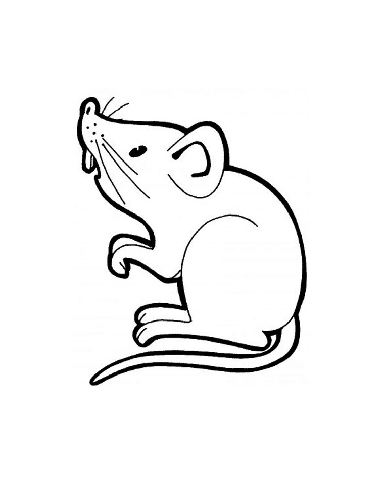 Mouse coloring page to download for free