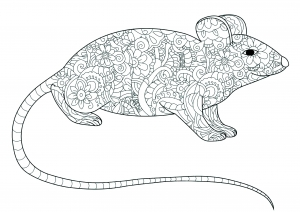 Coloring page mouse to color for kids