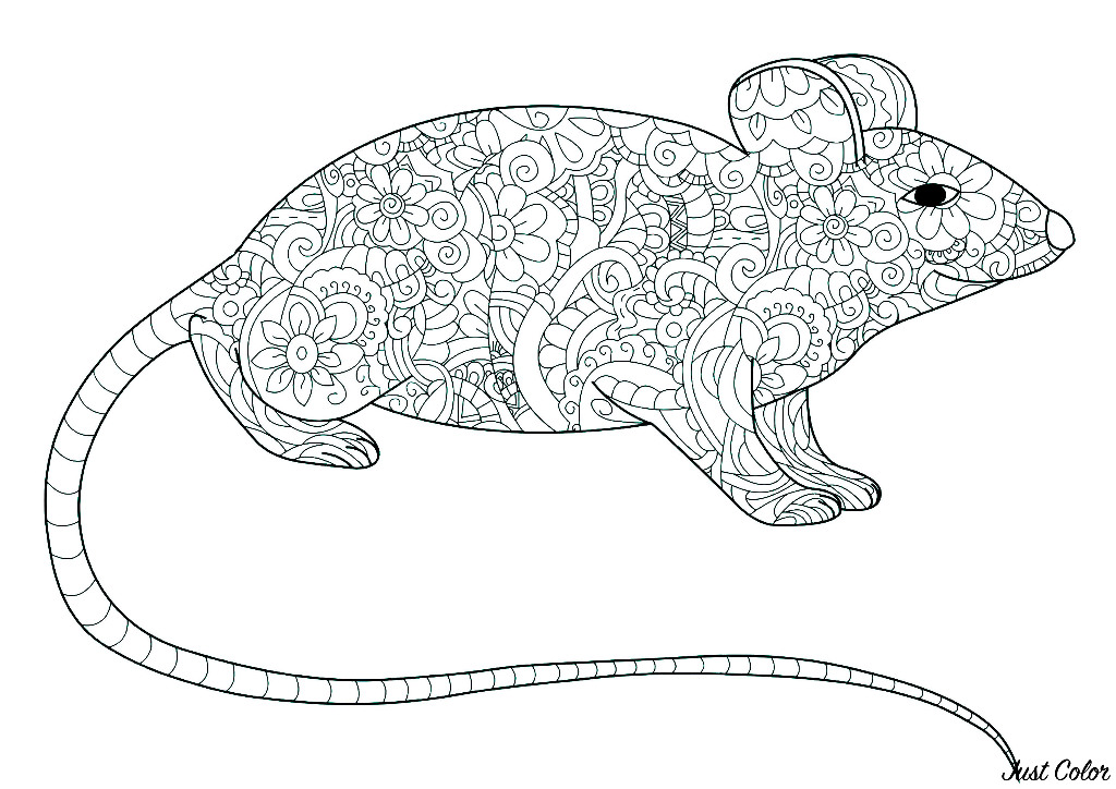Beautiful Mouse coloring page