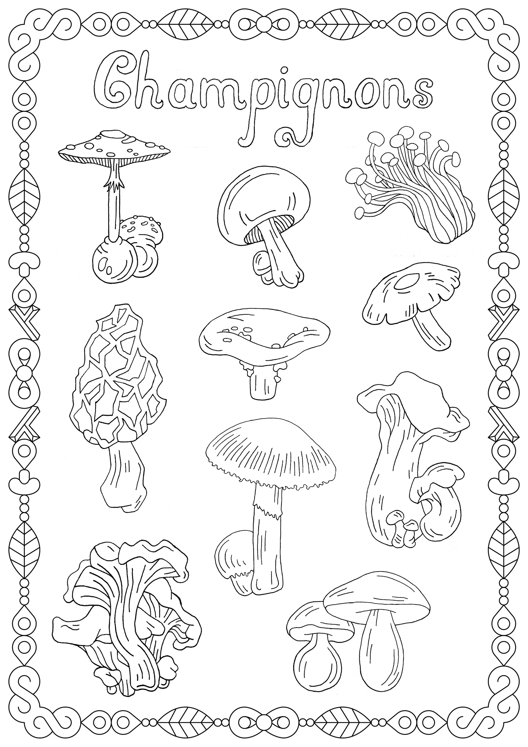 Mushrooms coloring page with few details for kids